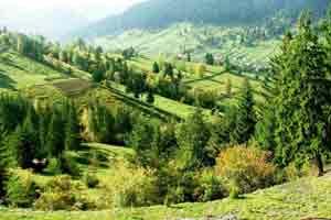 Bucovina (Romania Travel Guide)