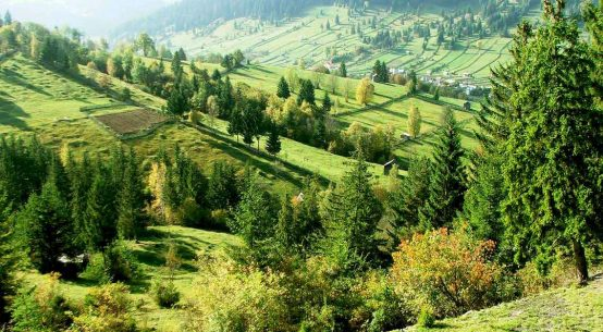 Bucovina (Romania Travel Guide)