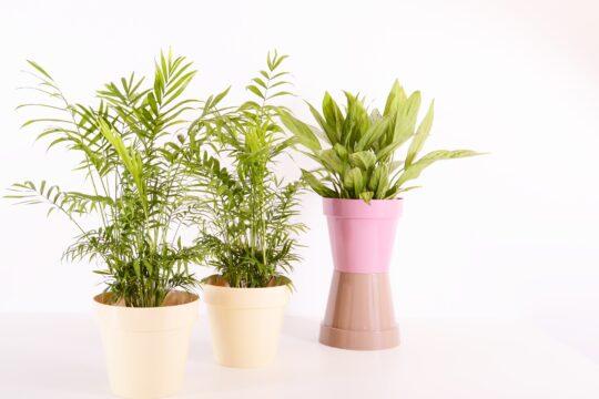 DIY A Plastic Bowl By Plastic Bags